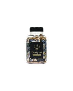 Turkey Tail Extract - 120 Capsules