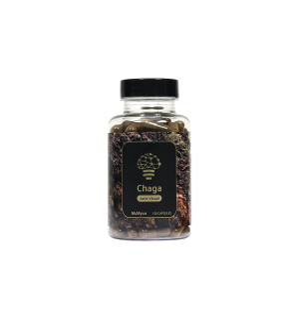 Chaga Extract - 120 Capsules