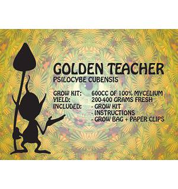 100% Mycelium Mushroom Grow Kit Golden Teacher