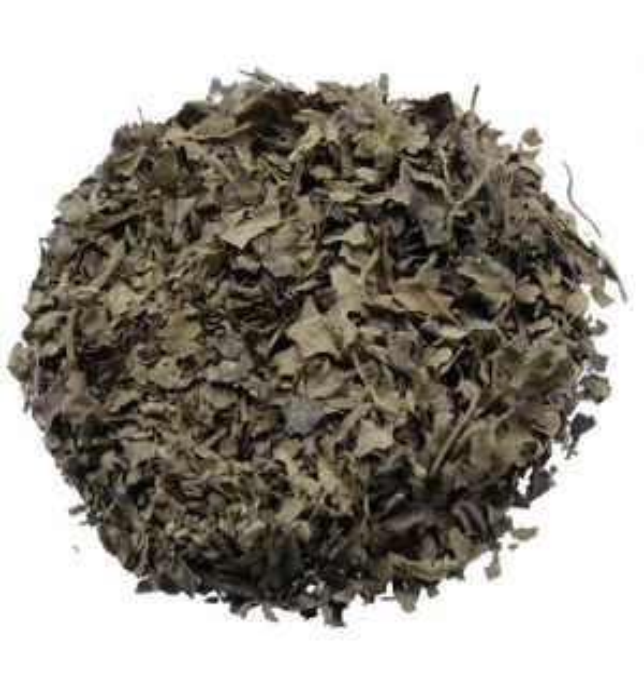 Salvia Divinorum Extracts - 1 gram
