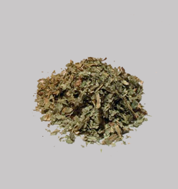 Wild lettuce (Lactuca virosa)