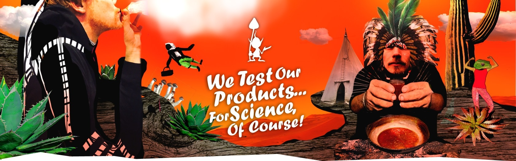 We Test Our Products